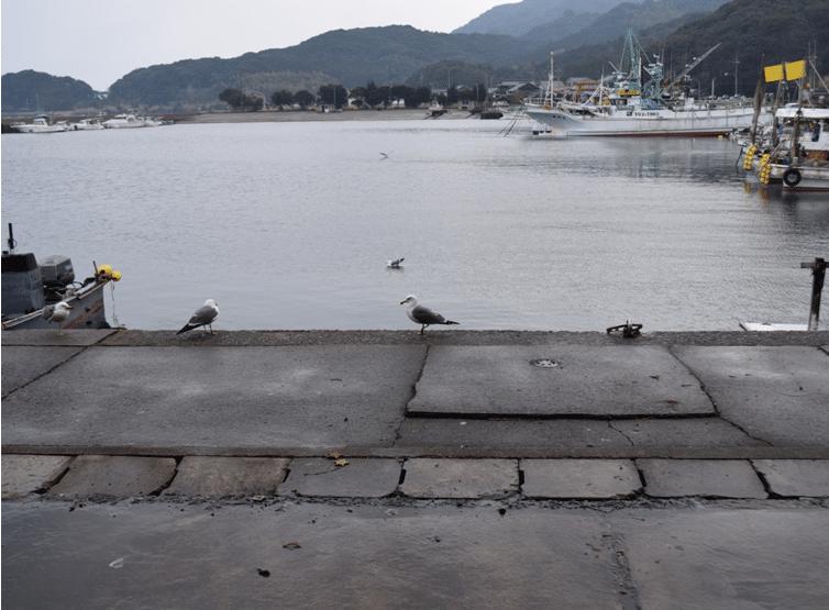 野場瀬漁協